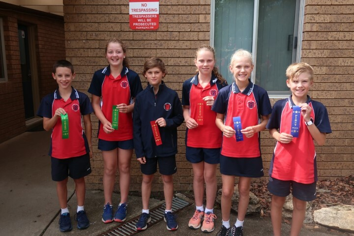 Cross country K-6 (6) (Small)